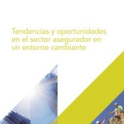 Informe Everis | Asociación DEC