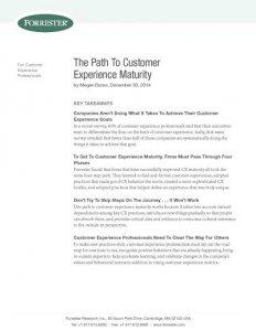 Path Customer Experience Maturity