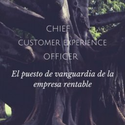 Informe Chief Customer Experience Officer | LaSalle y MdS