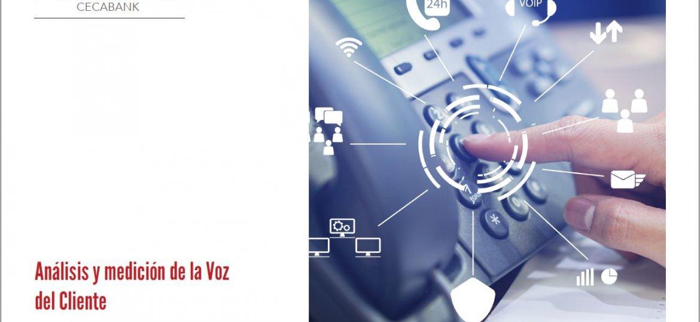 Análisis y medición de la voz del cliente pdf