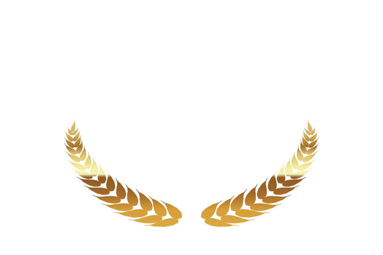 Mejor Proyecto de Innovacion | Premios DEC