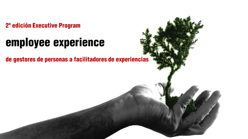 Employee Experience Executive Program - Cursos CX - La Salle